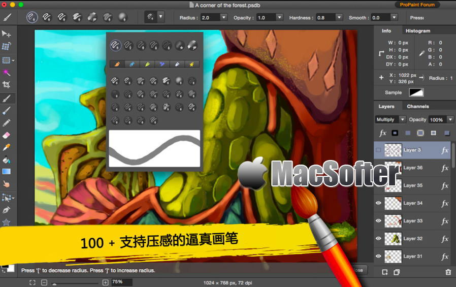 [Mac] 图片编辑Pro Paint : 好用的图像编辑软件