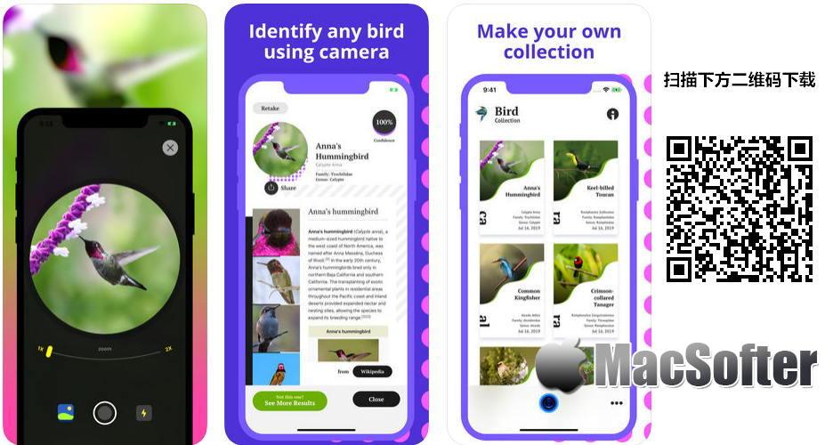 [iPhone/iPad限免] Bird Identification : 鸟类鉴定软件