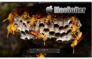 [Mac] MKPlayer : 好用的视频播放器软件