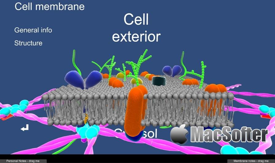 [Mac] EasyCellBio:3D细胞生物学模型软件