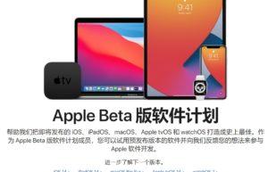 iOS 14/iPadOS 14 Public Beta 3 登场免费下载