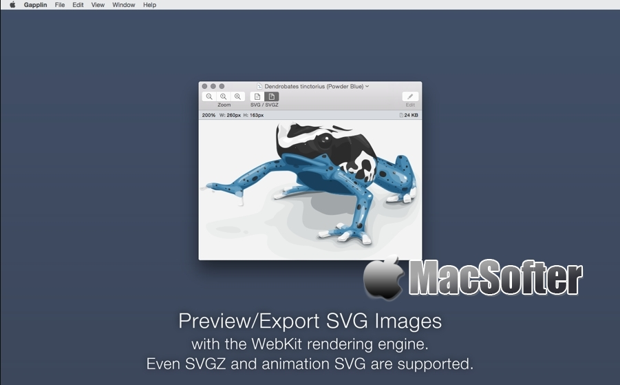 Gapplin for Mac : SVG图片查看及格式转换器