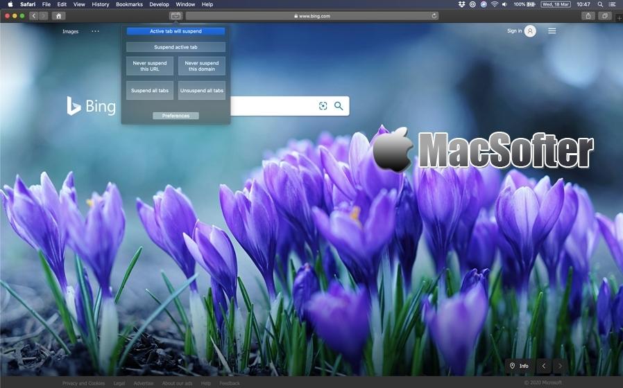 Tab Suspender for Mac :自动挂起Safari不使用的网页标签