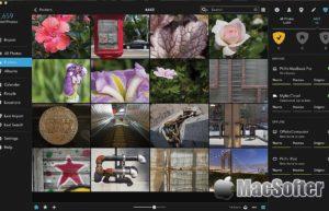 Mylio for Mac :好用的照片管理工具