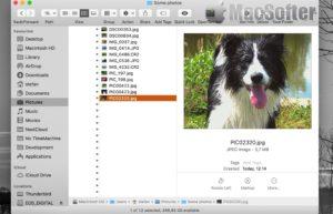 ExifRenamer for Mac : 照片、视频自动重命名工具