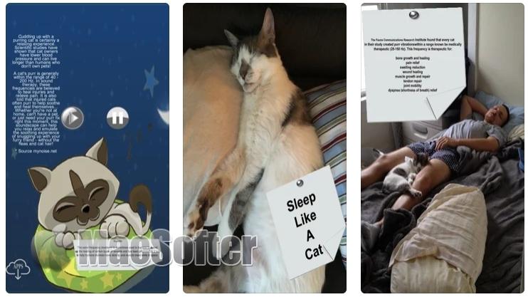 [iPhone/iPad限免] Purrrfect Sleep :猫咪呼噜声的白噪音软件