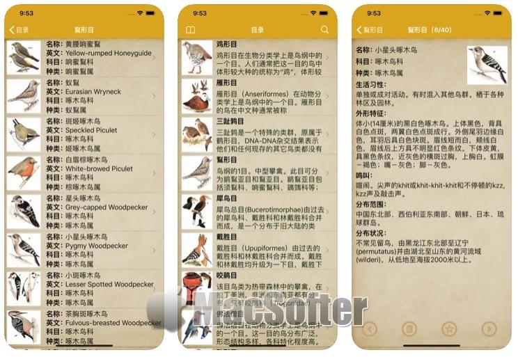 [iPhone/iPad限免] 鸟类大全 :鸟类知识大全