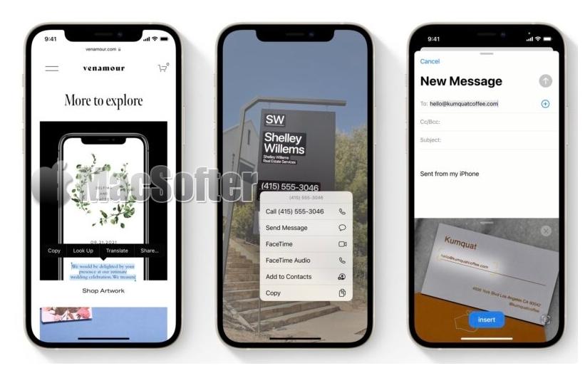 iOS 15 Live Text功能可识别照片中的文字且支持中文