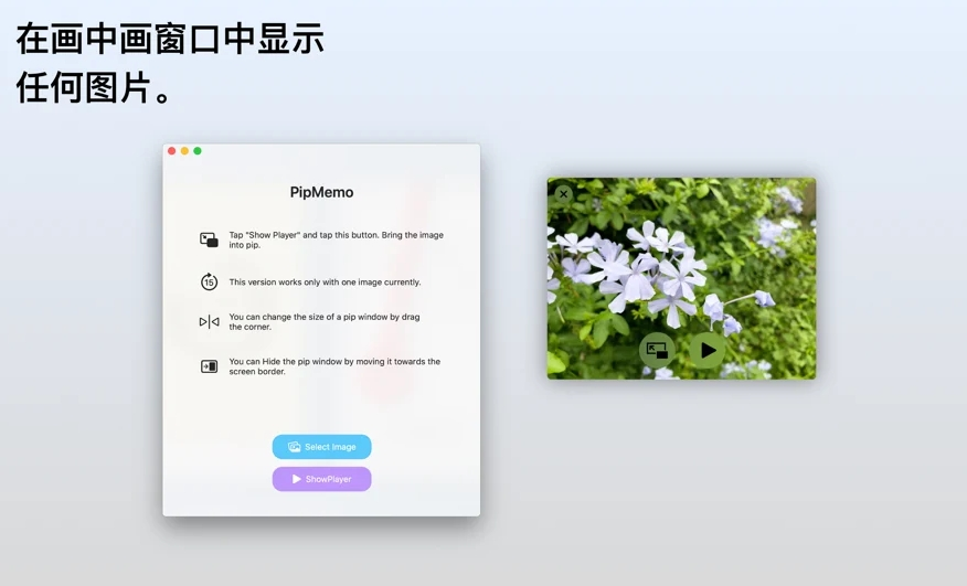 [Mac/iPhone/iPad限免] PipMemo : 在画中画窗口中显示任何图的工具